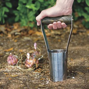 The bulb planting tool lifts out a neat core of soil. Measurements on the side of the tool help you place the bulbs at the correct depth.