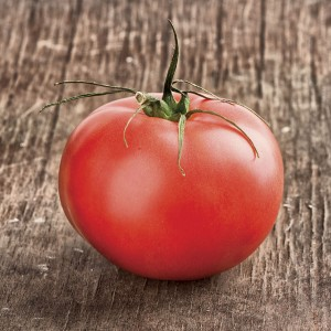 I am Beefmaster, and it takes me 80 days from transplant to set my giant 1+ lb. fruit. Please surround me only with friends!
