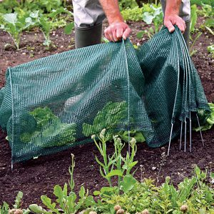 It just takes a few minutes to set up an Easy Tunnel over sun-stressed plants.