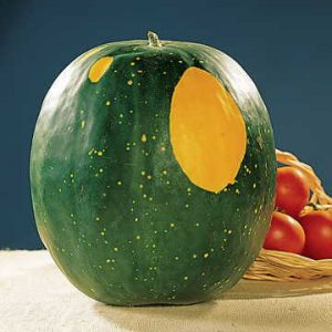 Image of Park Seed Watermelons