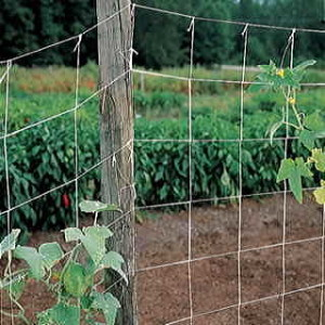 This simple netting trellis does double duty by providing shade, too!