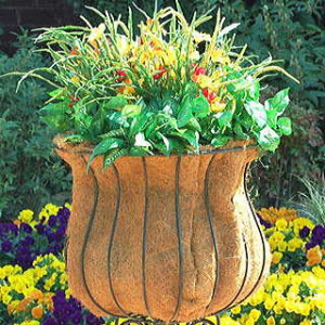 Sporting a deep well for root growth, this container is ideal for veggies!