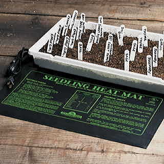 Heat, light, and water -- everything your seeds and seedlings need!