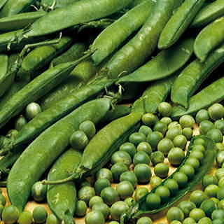 We may think of peas as a spring crop, but today's heat-resistant varieties can really extend the harvest into summer.