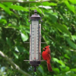 Do you check your outdoor thermometer compulsively during the winter? We do!