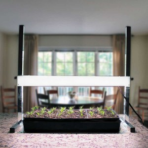 Plant lights are expensive, but there is no doubt that they make a huge difference in seed-starting and growing-on seedlings. This, our most economical model, lasts a lifetime.