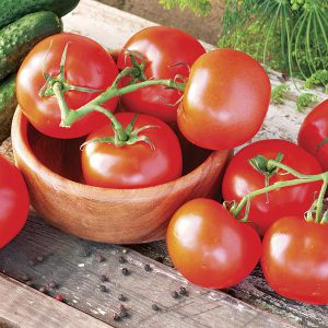 Indeterminate tomatoes will keep growing and fruiting even after temperatures fall!