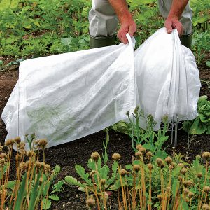 Don't let a freak early frost nip your fall crops! Set up Easy Tunnels now!