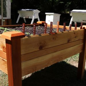 Today's raised garden beds are portable container gardens capable of growing big crops in less space!