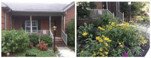 Image of Anns Garden Before and After