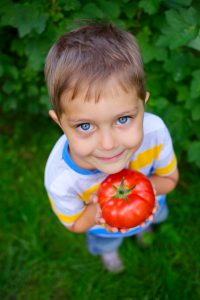 Image of Little Boy with Tomato