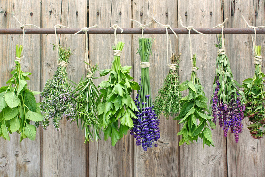 herb bundles hanging on rod