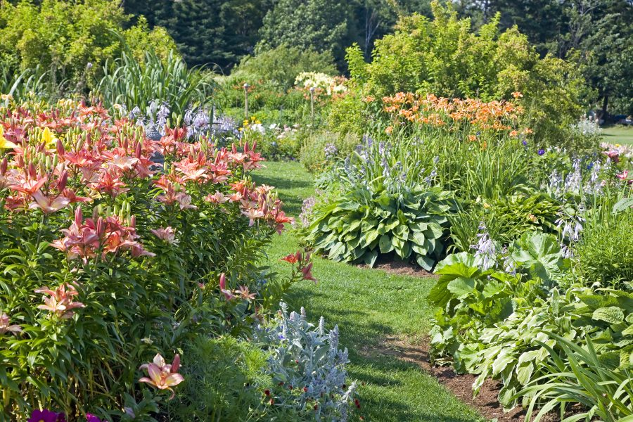 Classic Flower Gardening Trends Are Back